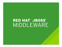 JBoss Data Grid - Standardabonnemang (3 år) - 16 kärnor MW0906233F3